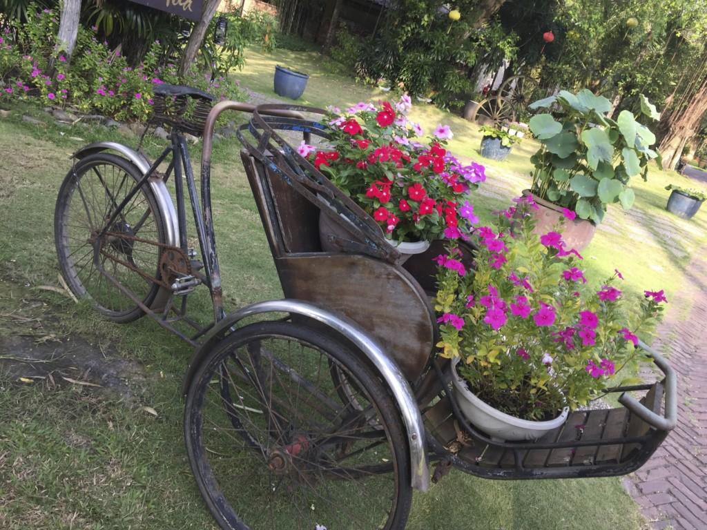 Bình Quới Tourist Village 公園、園芸の展示も手入れがゆきとどいている