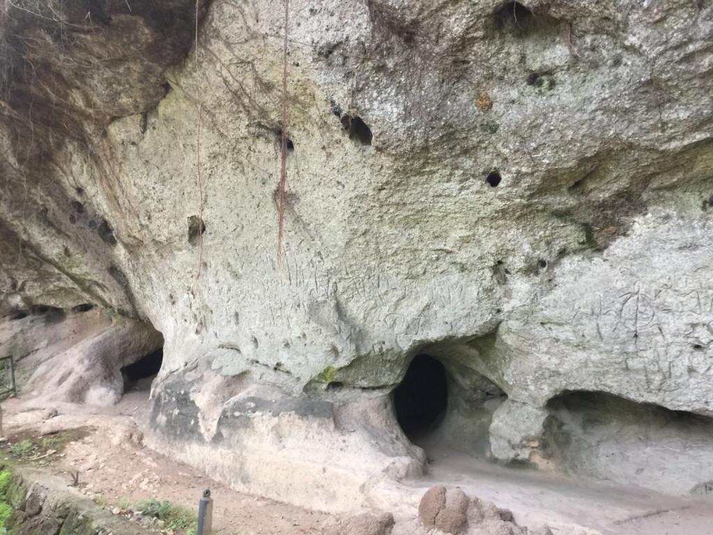 トンネルを抜けてから三分ほどで、本日「メインディッシュ」のアンゴノ壁画彫刻が登場