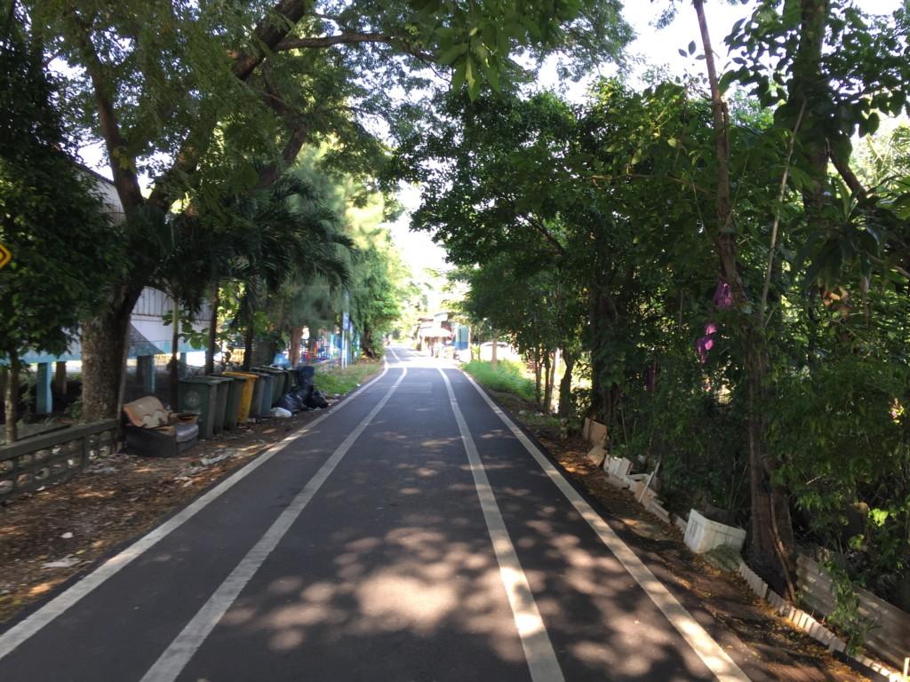 意外としっかり整備・清掃されていた島内道路