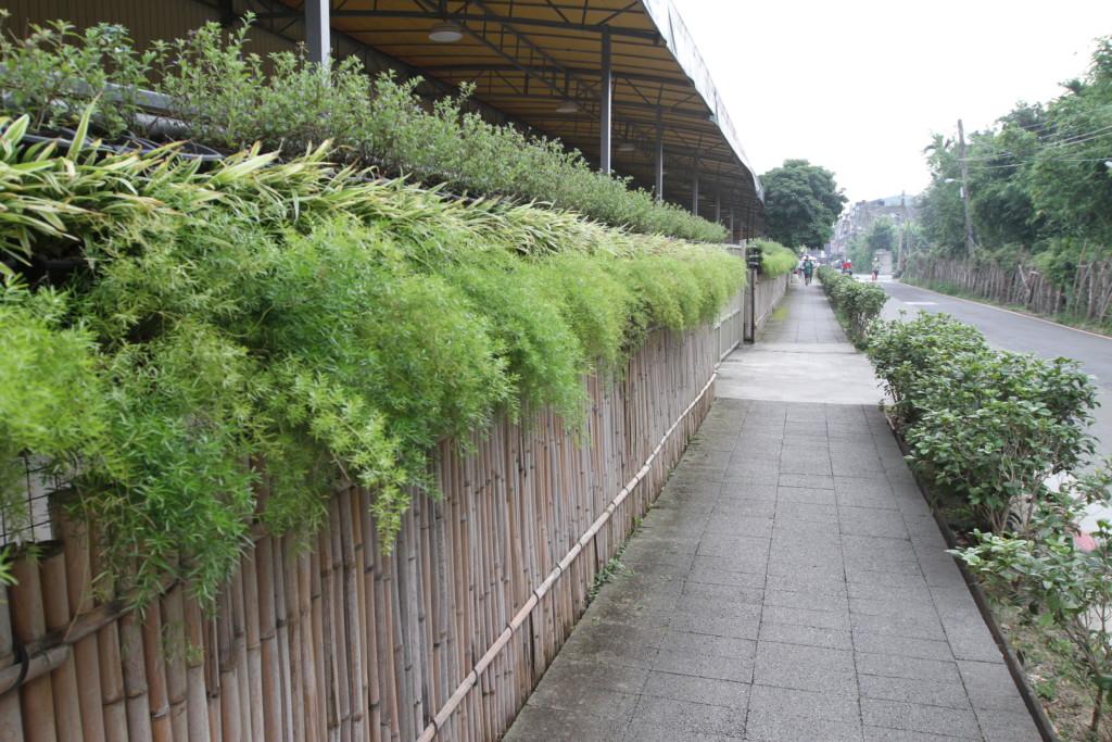 農禪寺への道