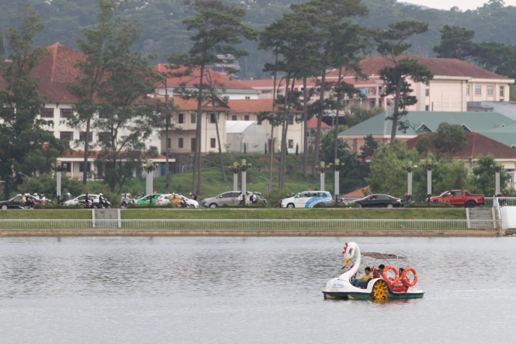 湖を行きかうアヒルボート