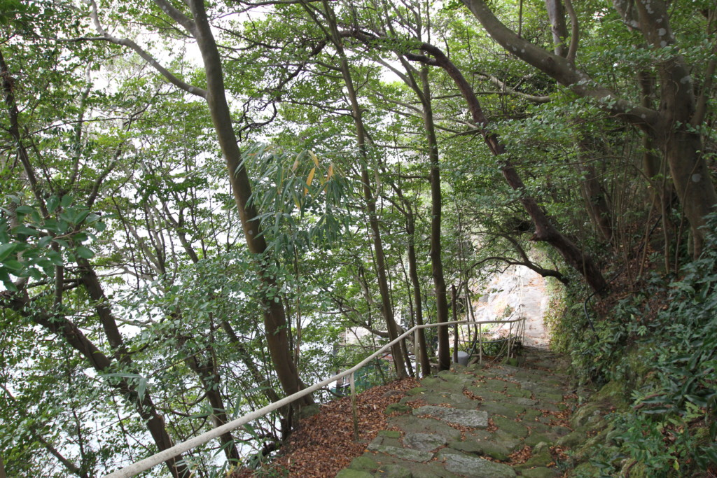 最初から木々が生い茂っていたわけではない島内