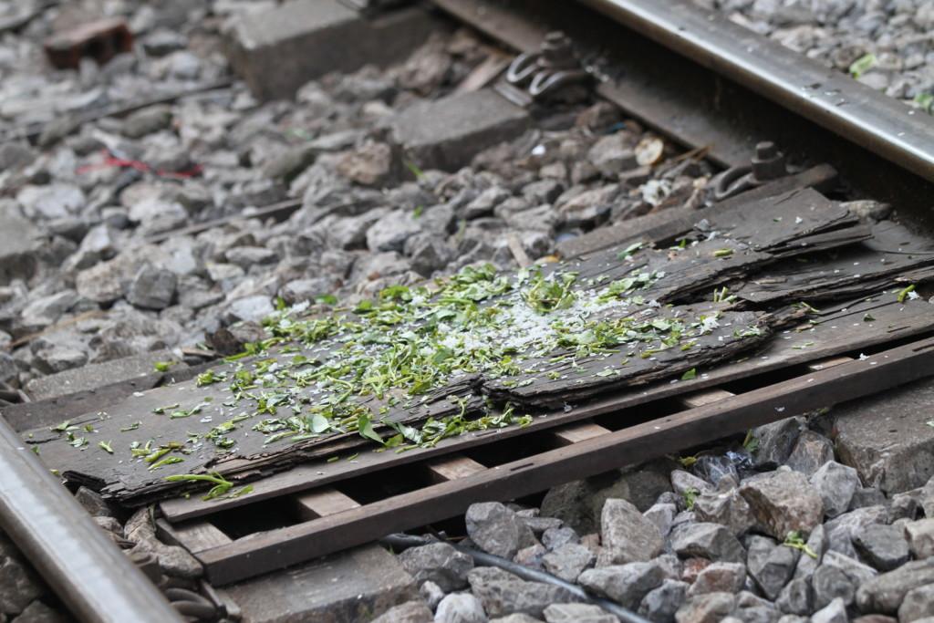線路が「まな板」に?