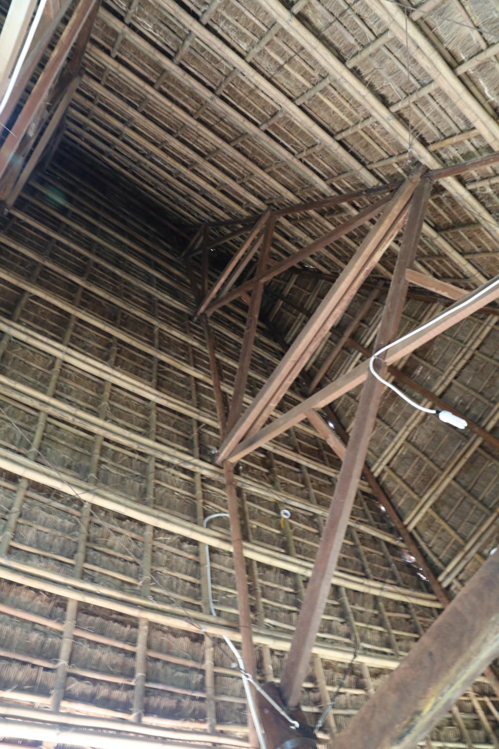 ロングハウスの屋根