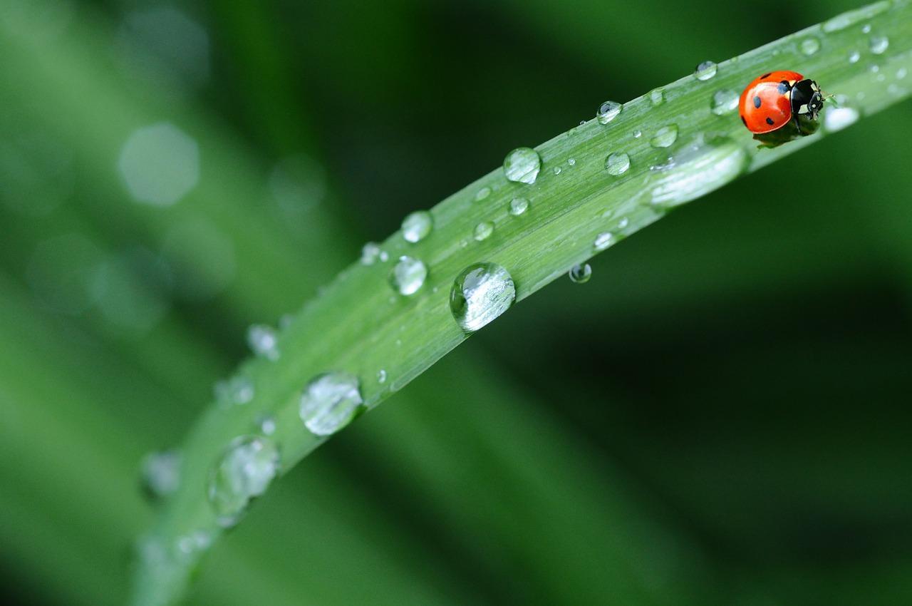 旅先で雨に降られるシチュエーションも想定したプラン作成を