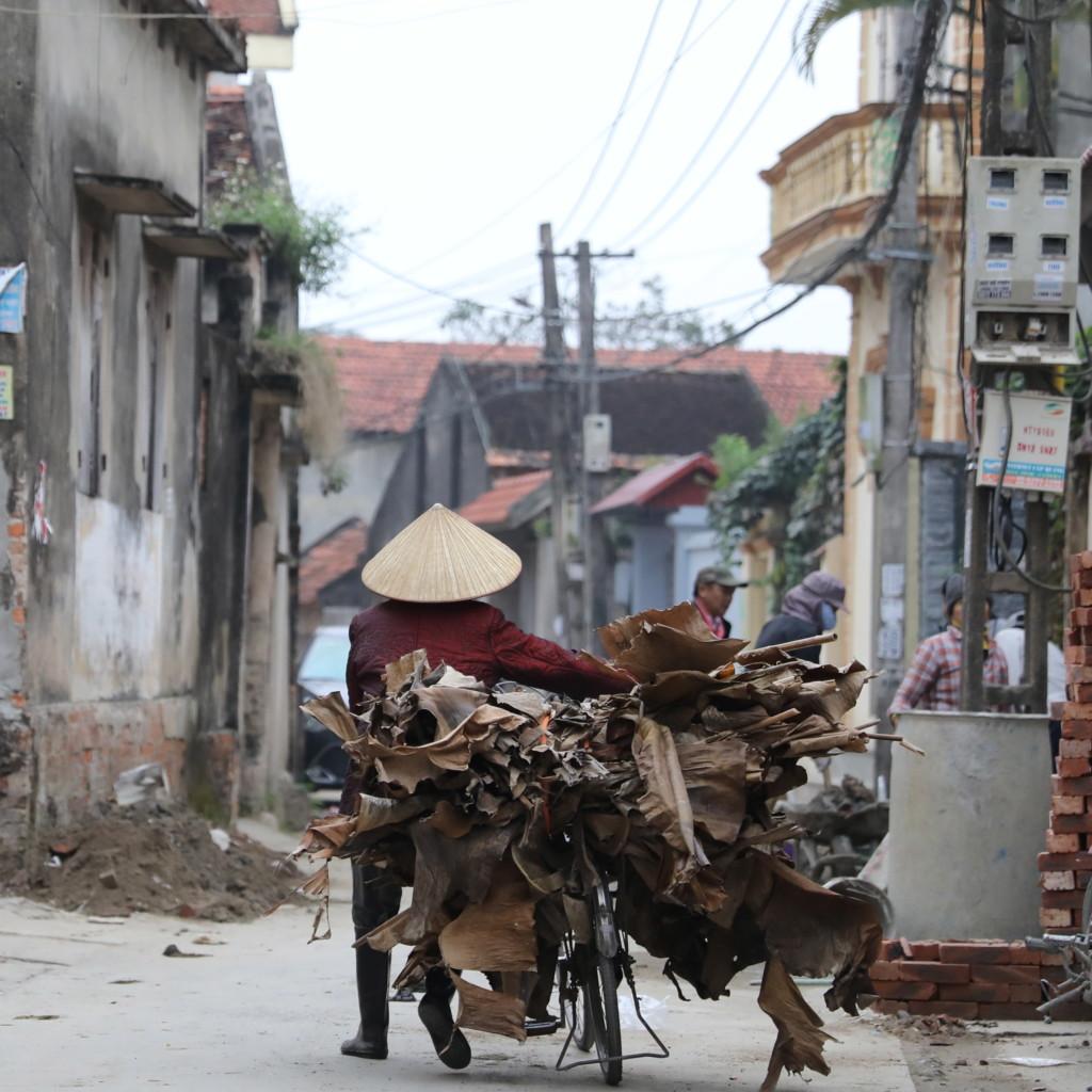 自転車で木を運ぶおばさん