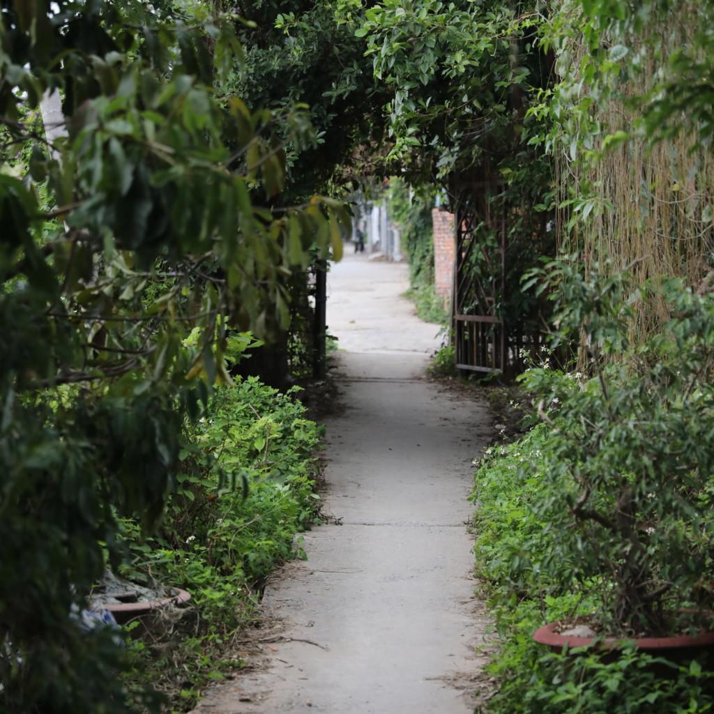緑の「トンネル」